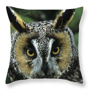 Long-eared Owl Up Close Throw Pillow