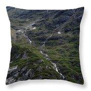 Long Way Down Throw Pillow