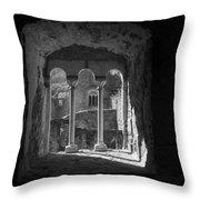 Looking Through A Window Throw Pillow