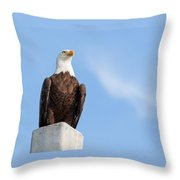 Lord Of The Realm Throw Pillow