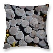 Lorimar Grapes Throw Pillow