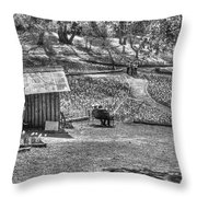 Lovers On Daffodil Hill 2  Throw Pillow