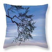 Low Angle View Of Tree At Dawn, Dark Throw Pillow