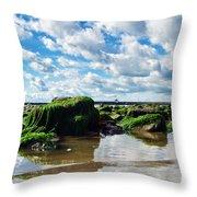 Low Tide At Lyme Regis Throw Pillow