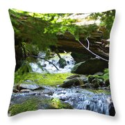 Lower Granite Falls 1 Throw Pillow