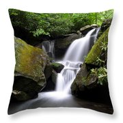 Lower Grotto Falls Throw Pillow