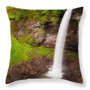 Lower Hills Creek Falls Throw Pillow