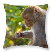 Macaque Eating An Orange Throw Pillow