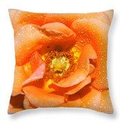 Macro Image Of A Rose Throw Pillow
