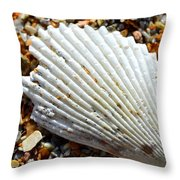 Macro Shell On Sand Throw Pillow