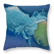 Macrophage Englufing Yeast Cell Throw Pillow