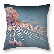 Macrophage Fighting Bacteria Throw Pillow