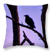 Magic Is The Night Throw Pillow