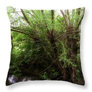 Magical Tree In Forest Throw Pillow