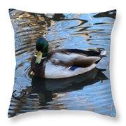 Mallard Drake Duck Throw Pillow