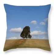 Manassas National Battlefield Park Throw Pillow