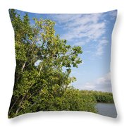 Mangrove Forest Throw Pillow by Carol Ailles