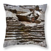 Marble Quarry Throw Pillow