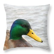 March Mallard  Throw Pillow