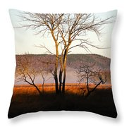 Marsh Tree Reflections Throw Pillow