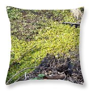 Marshy Throw Pillow