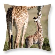 Masai Giraffe Giraffa Camelopardalis Throw Pillow