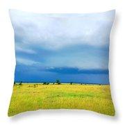 Masai Mara Kenya Throw Pillow