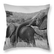 Maternal Love Throw Pillow