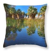 Mccallum Pond - Coachella Valley  Throw Pillow