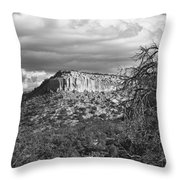 Mesa Throw Pillow
