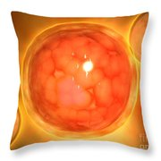 Microscopic View Of A Blastula Throw Pillow