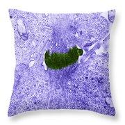 Midbody In Mitosis, Tem Throw Pillow