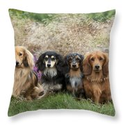 Miniature Long-haired Dachshunds Throw Pillow