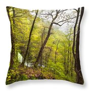 Misty Mountain Throw Pillow