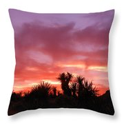 Mohave Color Throw Pillow