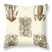 Molluscs Or Soft Worms Throw Pillow