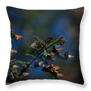 Monarch Butterflies Throw Pillow