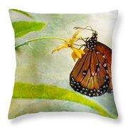 Queen Butterfly Danaus Gilippus Throw Pillow