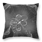 Moon Jellyfish - Black And White Throw Pillow