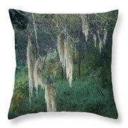 Moss Hanging Over The River Throw Pillow