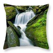 Mossy Rocks On Cascade Throw Pillow