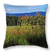 Moultons Field Throw Pillow