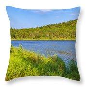Mount Desert Island Throw Pillow