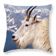 Mountain Goat Portrait On Mount Evans Throw Pillow