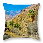 Mountain Peaks From Lower Palm Canyon Trail In Indian Canyons Near Palm Springs-california Throw Pillow