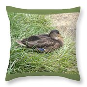 Ms Mallard Throw Pillow