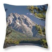 Mt. Moran And Jenny Lake Throw Pillow