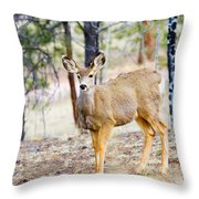 Mule Deer Does Throw Pillow