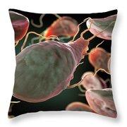 Multiple Giardia Trophozoites Throw Pillow
