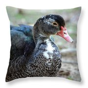 Muscovy 14-8 Throw Pillow